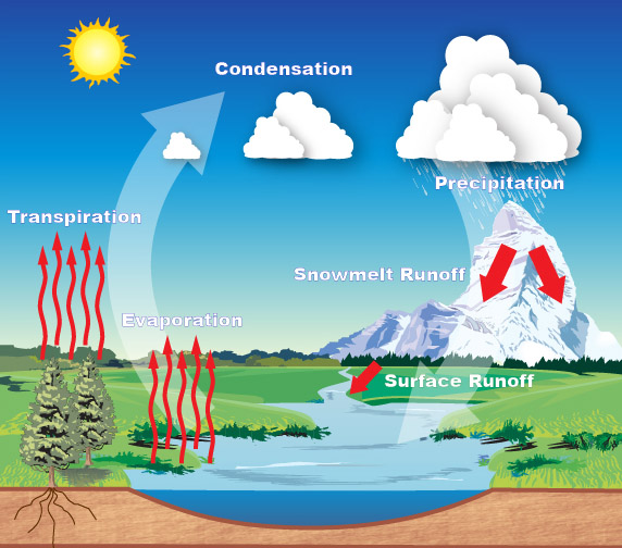 Hydrological Cycle TeamVelara.com/Hydr8